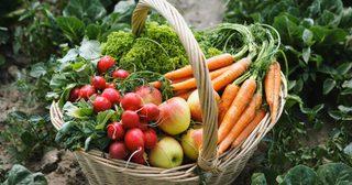 แช่ผัก ผลไม้ ไว้สดนาน แบบไม่ง้อตู้เย็นเลยต้องวิธีนี้ !
