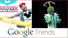 Google ประกาศ สุดยอดคำค้นหาแห่งปีของประเทศไทย – 'ปานามา' มาวิน!!