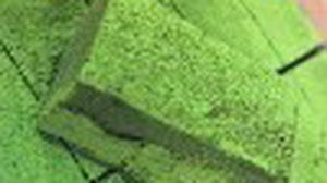 ช็อกโกแลตรสชาเขียว Nama Green Tea Chocolate