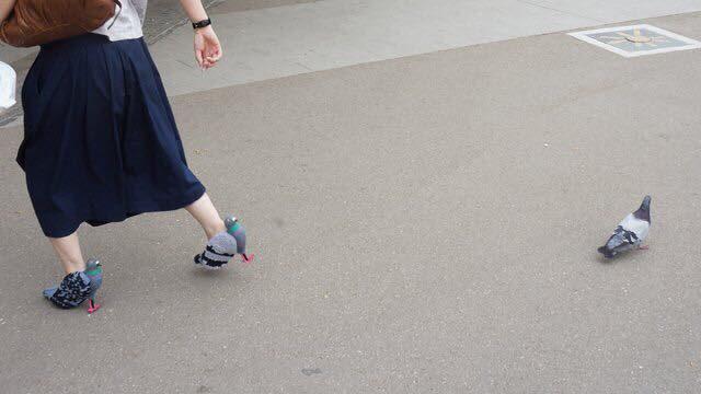เหมือนจริงจน นกกลัว!! รองเท้านกพิราบ ไอเดียแปลกจากญี่ปุ่น