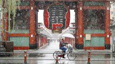 เฟิร์สสโนว์! หิมะตกที่โตเกียว ประเทศญี่ปุ่น เร็วกว่าปกติในรอบ 54 ปี