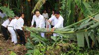 หาชมยาก พิธีอัญเชิญต้นกล้วยเพื่อใช้แทงหยวก ประดับพระจิตกาธาน